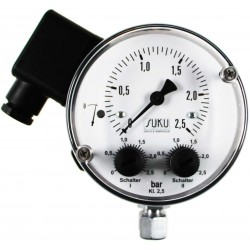 Type 5591, Differential pressure gauge NS100 with pressure spring, diaphragm seal, microswitch